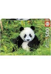 Puzzle 500 Ours Panda Educa 17082