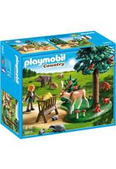 Playmobil Animaux de la Forêt