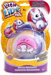 Little Live Pets S2 Riccio rotondo Famosa 700013972