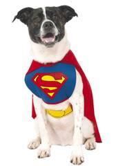 Disfarce de Mascote Superman Tamanho L Rubies 887892-L