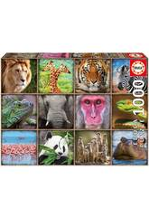 Puzzle 1.000 Collage De Animais Selvagens Educa 17656