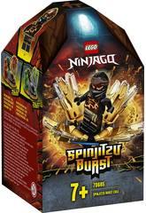 Lego Ninjago Spinjitzu Explosif Cole 70685