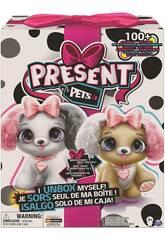 Present Pets Il Mio Cucciolo Regalo Kweenie o Princess Bizak 6192 6530