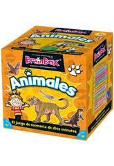 Brainbox Animals Asmodee TGG13403