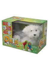 Cheisy Il Cane