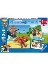 Puzzle Pat'Patrouille avec Ryder 3x49 Pièces Ravensburger 9239