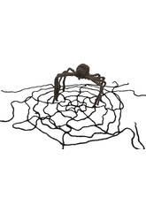 Tela de araña con araña Peluda
