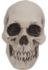 Crâne 7 cm